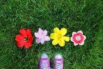 Choisir des posters fleurs